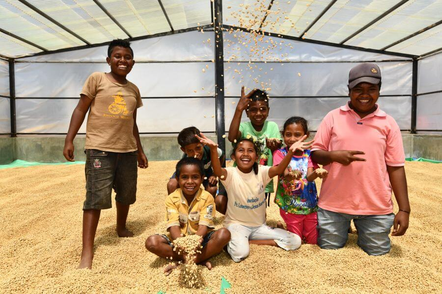 Lagaranta koffie van de boer Oost Timor