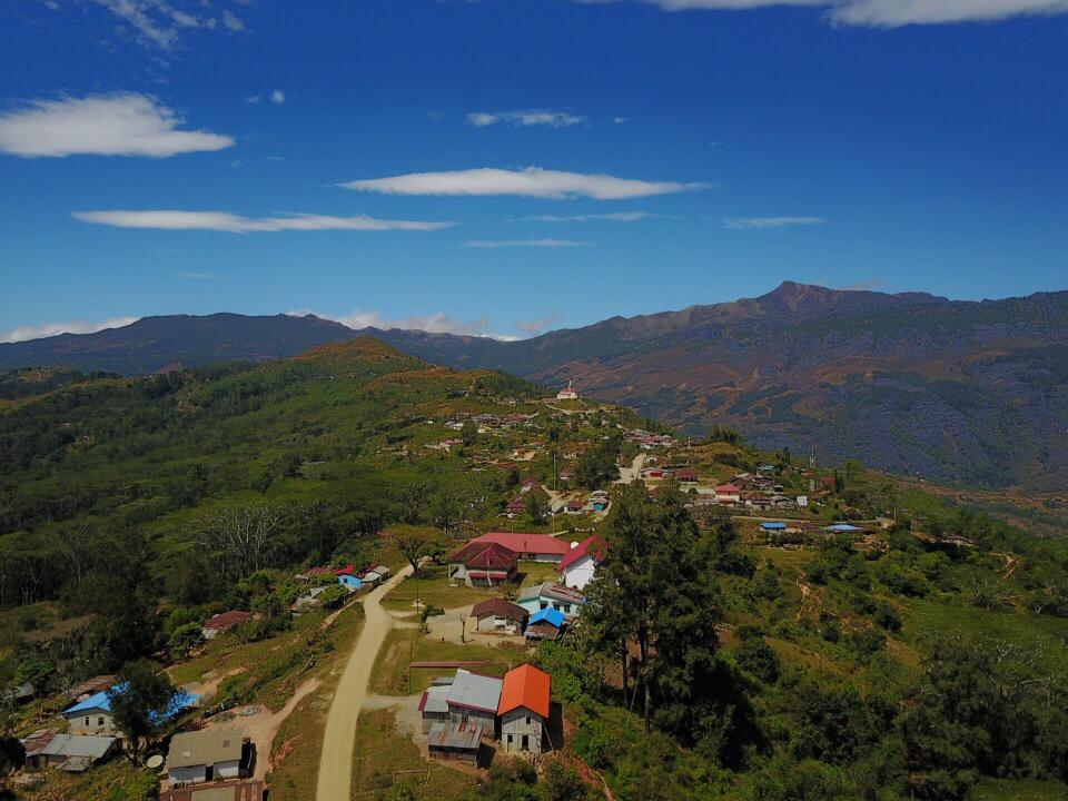 Plantage Oost Timor